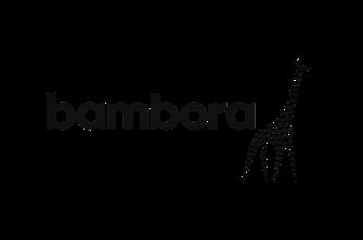 Bambora-img